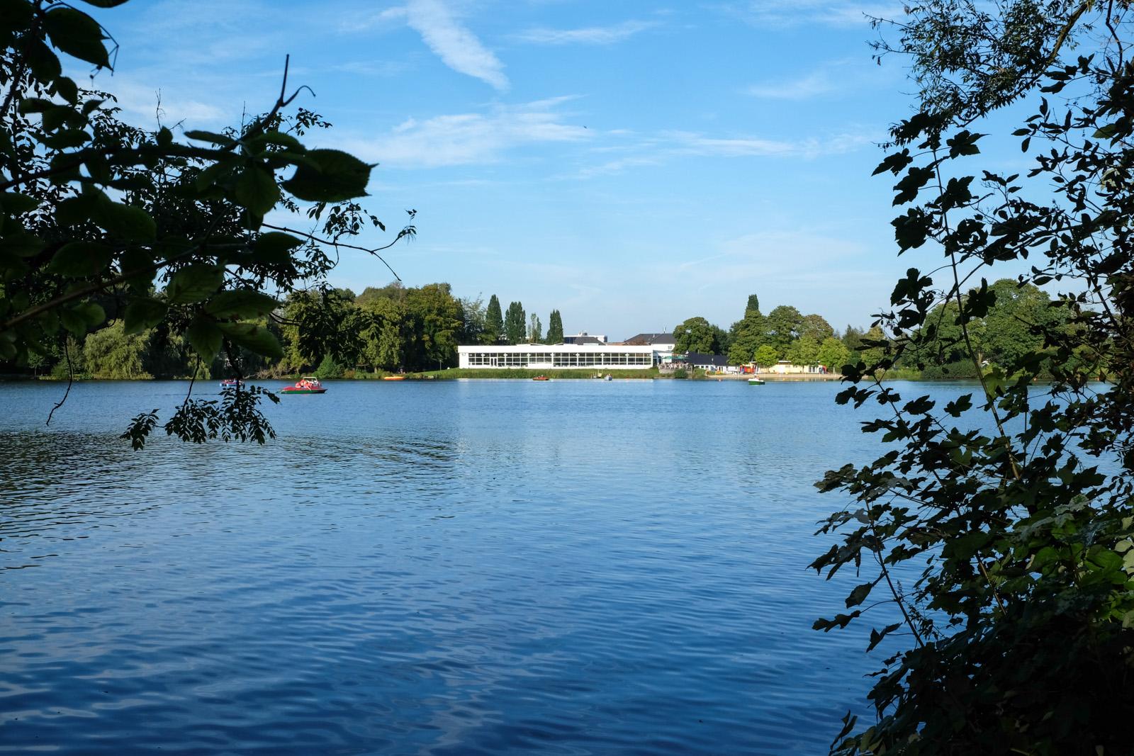 Wassermann im Rantzauer See - YouTube